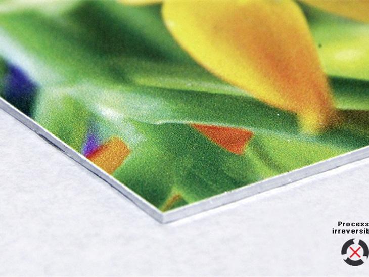 Prodotto | Stampa diretta su lamina di alluminio bianco con tecnologia UV